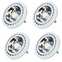 Newhouse Lighting AR111-1575-4 電球 ホワイト