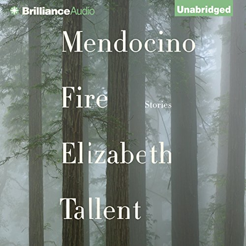 Mendocino Fire audiobook cover art