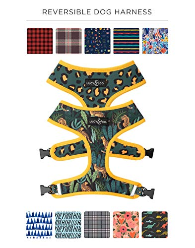 Reversible Dog Harness Walking Halter - Best Designer Pet Harnesses For Extra Small Medium Large XL Dogs Plus Pug Breeds - Padded Adjustable Puppy Vest For Easy Walking (X-Large, Jungle Vibes)