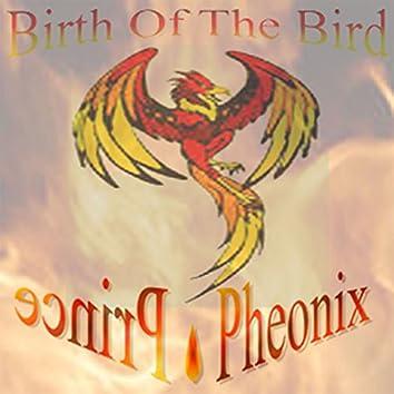 Birth of the Bird