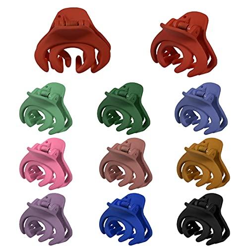 AIEX 10 Pezzi, pinze per capelli di Polpo in Colori Misti per Capelli Spessi Clip per Artigli Piccoli Accessori per Donne e Ragazze
