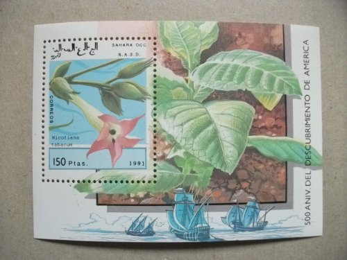 西サハラ『花』(アメリカ到達500周年)