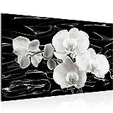 Runa Art Bild Blumen Orchidee Wandbild Vlies - Leinwand