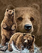 3D Home Wall Art Decor Lenticular Pictures, Bear Collection Holographic Flipping Images, 12x16 inches Animal Poster Painting, Without Frame, Brown Bear