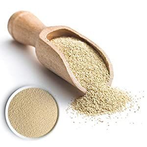 IDEAL levadura seca 500g - paquete a granel de levadura para hornear - levadura de panadero - levadura seca para hornear masa de pizza, pan o pasteles - comprar levadura seca (500 g)
