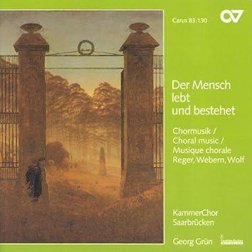 WOLF, H.: 6 Geistliche Lieder / REGER, M.: 8 Geistliche Gesange / WEBERN, A.: Entflieht auf leichten Kahnen (Saarbrucken Chamber Choir, Grun)