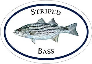 WickedGoodz Oval Vinyl Striped Bass Decal - Fishing Bumper Sticker - Perfect Ocean Fishing Gift