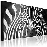 murando - Cuadro en Lienzo 120x80 - Impresión de 3 Piezas Material Tejido no Tejido Impresión Artística Imagen Gráfica Decoracion de Pared Cebra 030216-14