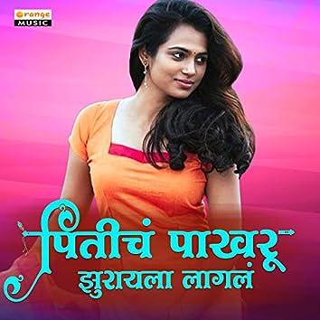 Priticha Pakhru Jhurayala Lagla