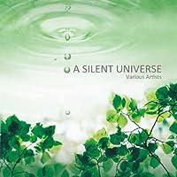 A SILENT UNIVERSE
