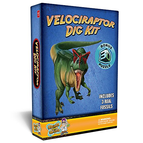 Discover with Dr. Cool Velociraptor Dinosaur DIG kit – Excavata 3 Real Dino fossiles.