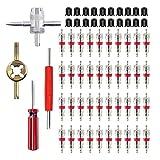 HUAZIZ Juego herramientas núcleo válvula con 40 núcleos de válvula + 20 tapas válvula de neumático + 1 herramienta válvula 4 vías + 2 piezas herramienta reparación + 1 llave núcleo de válvula