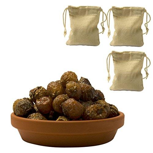Premium Waschnüsse (Sapindus mukorossi) 1kg mit 3 Baumwollbeuteln