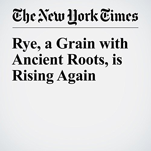 Rye, a Grain With Ancient Roots, Is Rising Again copertina