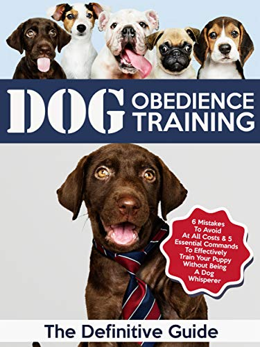 Dog Obedience Training The Definitive Guide 6 Mistakes To Avoid At All Costs 5 Essential
