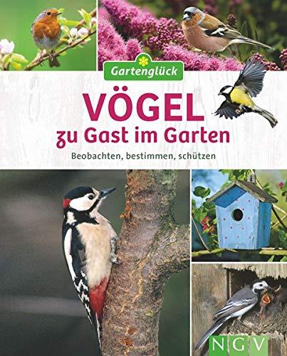 Vögel zu Gast im Garten: Beobachten, bestimmen, schützen