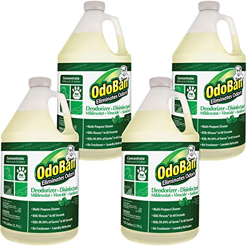 OdoBan Concentrate Disinfectant Laundry and Air Freshener Eucalyptus Scent 4 Gallons