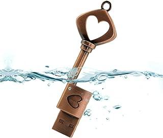 CHUYI Vintage Heart Key 8GB USB 2.0 Flash Drive Metal Pen Drive Memory Stick Waterproof Flash Drive Cute Thumb Drive for Computer PC Notebook Laptop