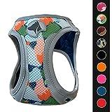 Croci C5081020 - Hiking Reflective Pettorina Reflective Per Cani, Multicolore (Harlequin), XS 1 Unita