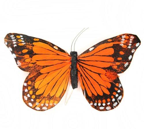 Touch of Nature Monarque en plumes sur fil pour loisirs créatifs Orange/noir 15,2 cm