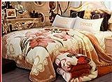 Warm Winter Fleece Plush Blanket King Size, Heavy Blanket - Silky Soft and Warm, 2 Ply Reversible Raschel Bed Blanket, (Orange/Yellow)