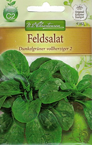 Chrestensen Feldsalat 'Dunkelgrüner vollherziger 2'
