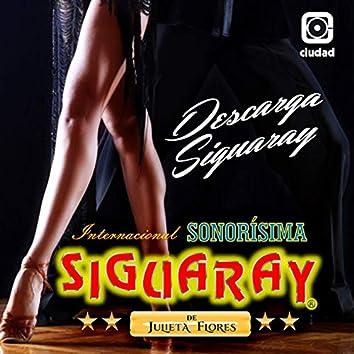 Descarga Siguaray (Cumbia de los Toquesitos)