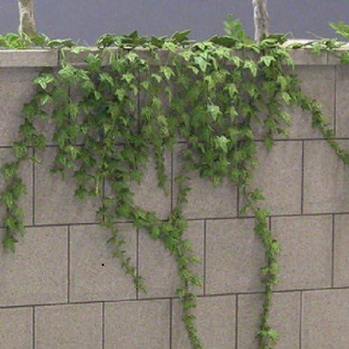 Diorama Accessories series Ivy (japan import)