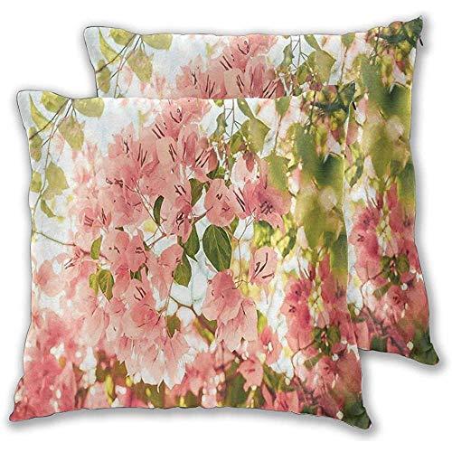 Butlerame Juego de 2 Fundas de cojín, Ramas de Flores de buganvilla en una Vista soleada del Parque Natural Summer Blossoms, Funda de Almohada Decorativa Cuadrada de 18x18 Pulgadas