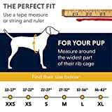 Zoom IMG-1 ruffwear giubbotto salvagente per cani