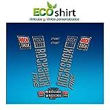 Ecoshirt 09-5LW8-9O7X Pegatinas Stickers Fork Rock Shox Pike 2018 Am177 Aufkleber Decals Autocollants Adesivi Forcela, Plata