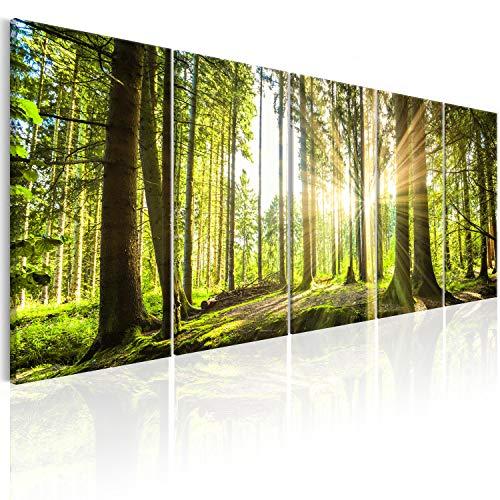 murando Acrylglasbild Wald 200x80 cm 5 Teilig Wandbild auf Acryl Glas Bilder Kunstdruck Moderne Wanddekoration - Waldlandschaft Natur Panorama Baum c-C-0177-k-n