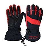 Winter Ski Snowboard Gloves Waterproof Windproof 3M Thinsulate Warm Touch Screen Insulated Sportwear