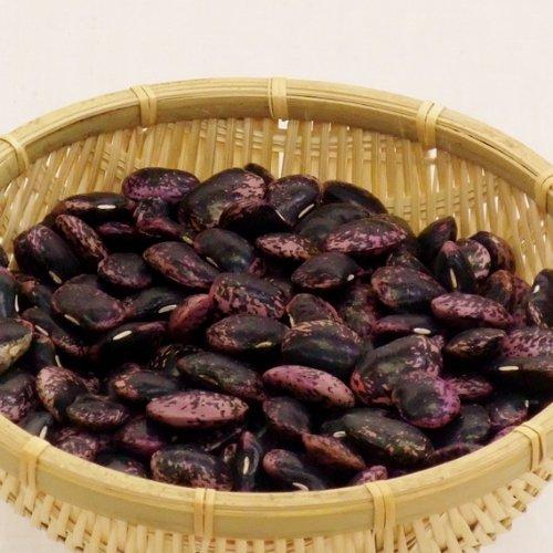 紫花豆 むらさきはなまめ 北海道産 乾燥豆 令和2年度産(2020年収穫) 1kg
