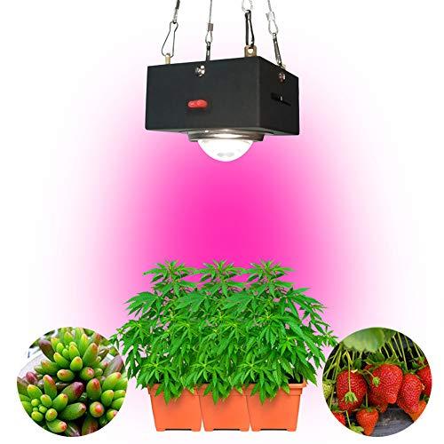 60W LED Plant Groei Lamp, Lenticulaire Vul Licht Volledige Spectrum Hangende armatuur voor Indoor Kas Planten Bloeien, Fruiting