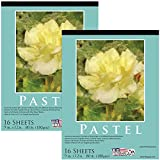 U.S. Art Supply 9' x 12' Premium Pastel Paper Pad, 80 Pound (180gsm), Assorted Natural Tone Paper Colors, Pad of 16-Sheets (Pack of 2 Pads)