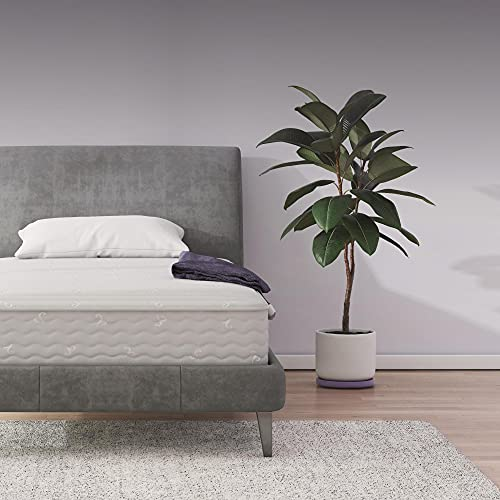 Signature Sleep Contour 8' Reversible Mattress, Independently Encased Coils, Bed-in-a-Box, Twin
