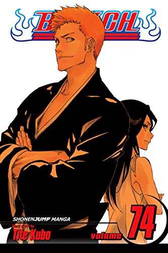 Bleach, Vol. 74: The Death and the Strawberry