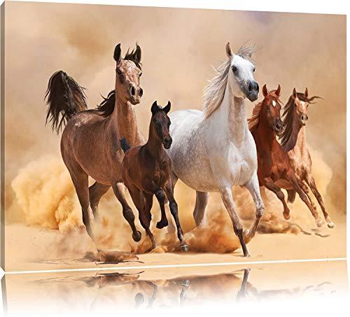 BSLIAO vijf paard poster met muurschilderijen op het strand, woonkamer foto's op de muurschilderijen gedrukt, kunstfotografie met decoratieve muurkunst, abstract vlecht paarden affiche 46x31cm Geen lijst.