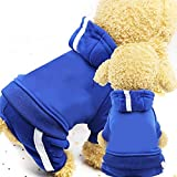 Tuzi Qiuge 2 Hundehoodies, Kleidung, Wolle Pullover, warme Pullover, 4-Bein Baumwolljacke Sweatshirtjacke, Größe: M (blau) (Color : Blue)