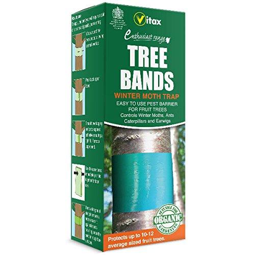 Vitax árbol banda trampas–Pack de 2–1