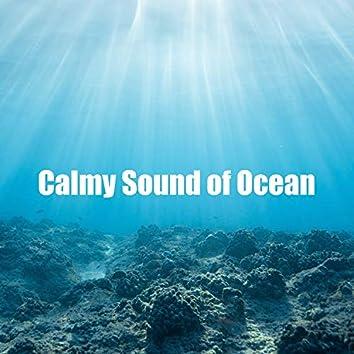 Calmy Sound of Ocean