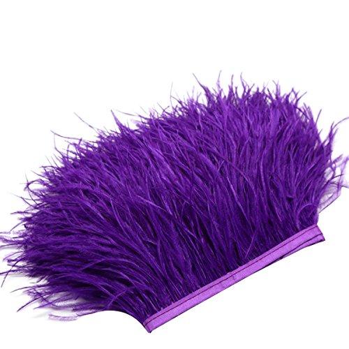Plumas de Franja ROSENICE pluma del recorte para vestidos de costura Decoración artesanal 2M (Púrpura)