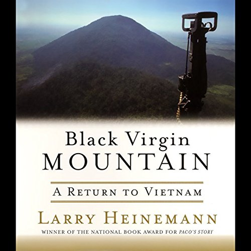 Black Virgin Mountain audiobook cover art