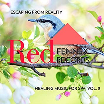 Escaping From Reality - Healing Music For Spa, Vol. 2