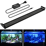 BELLALICHT Rampe LED Aquarium, Lampe LED Aquarium Bleu et Blanc éclairage Aquarium 29W 116-136CM lumière Aquarium 2 Modes permutable Extensibles