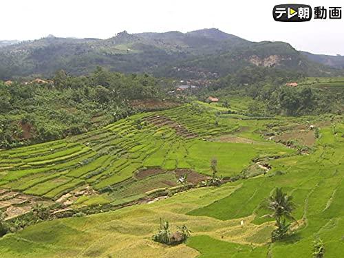 #45 インドネシア・タイ2 ジャワ島とタイ東北地方の旅