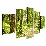 islandburner Bild Bilder auf Leinwand 5 teilig im Wald