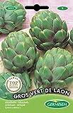 Germisem Vert de Laon Semillas de Alcachofa 1 g
