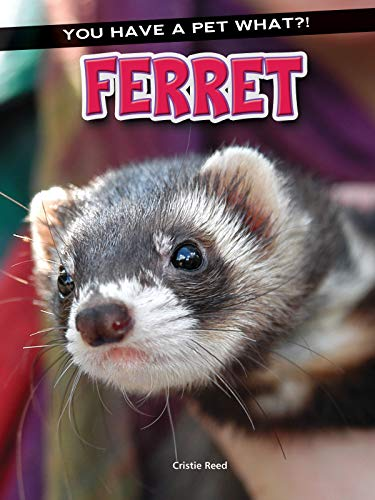Ferret (You Have a Pet What?!) (English Edition)